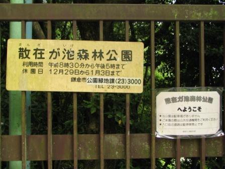 鎌倉散在が池.JPG