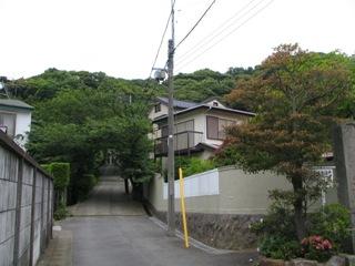 鎌倉扇が谷2.JPG