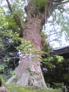 鎌倉観光おすすめ05120110507.jpg