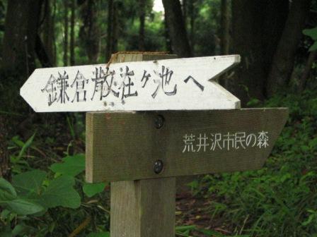 鎌倉ハイキング4.JPG