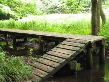 鎌倉湖2.JPG
