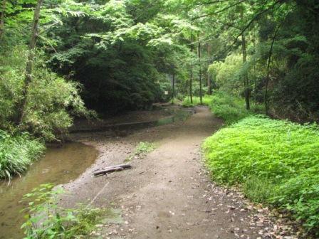 鎌倉湖3.JPG