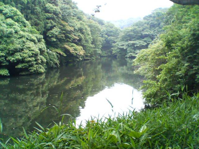 鎌倉市鎌倉湖.JPG