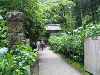 鎌倉明月院入り口.JPG
