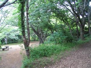 江ノ島片瀬山公園.JPG