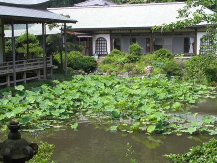 鎌倉光明寺7.JPG